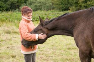 Woman pets horse.